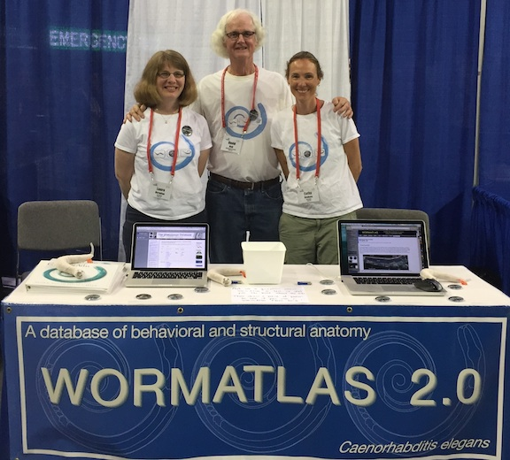 WormAtlas Booth Aging 2014